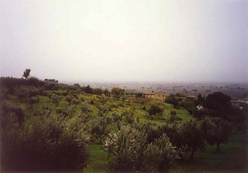 Assisi01re_1