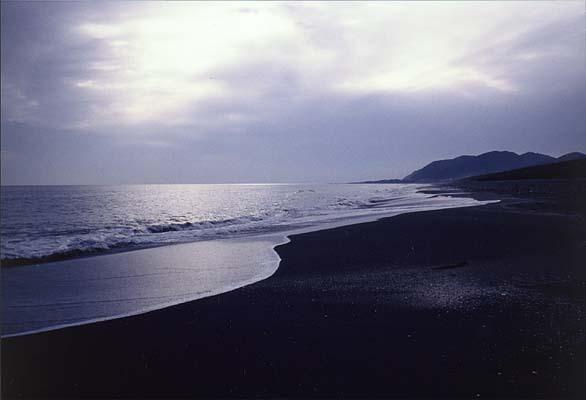 Sea136